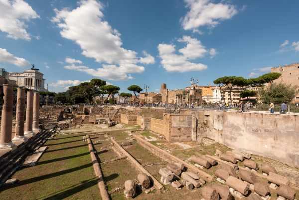 Visita la Colina del Palatino un verdadero <b>museo al aire libre</b>. El Palatino es la zona más antigua de la ciudad, allí podrás admirar algunos de los panoramas más increíbles de Roma.
