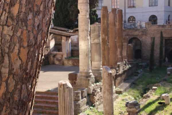 罗马观光游从历史中心核心地带银塔广场(Largo di Torre Argentina)开始 — Julius Caesar 在此被行刺。我们经过如诗如画的马太广场进入犹太区,驻足在美丽的海龟喷泉,欣赏其三种不同颜色的大理石,了解这里的浪漫过往。我们沉浸在世界上最古老犹太区的悠久历史中,这里居民和罗马居民的故事交织在一起,仍旧写在街区的墙壁上。